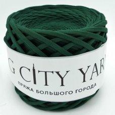 Пряжа Big City Yarn Хвоя