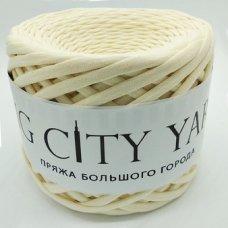 Пряжа Big City Yarn Шампань