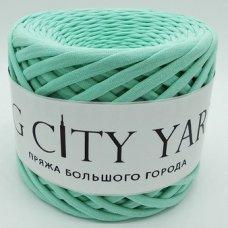 Трикотажная пряжа Сити Ярн Светлая мята
